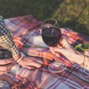 Top Gadgets for Picnic Lovers